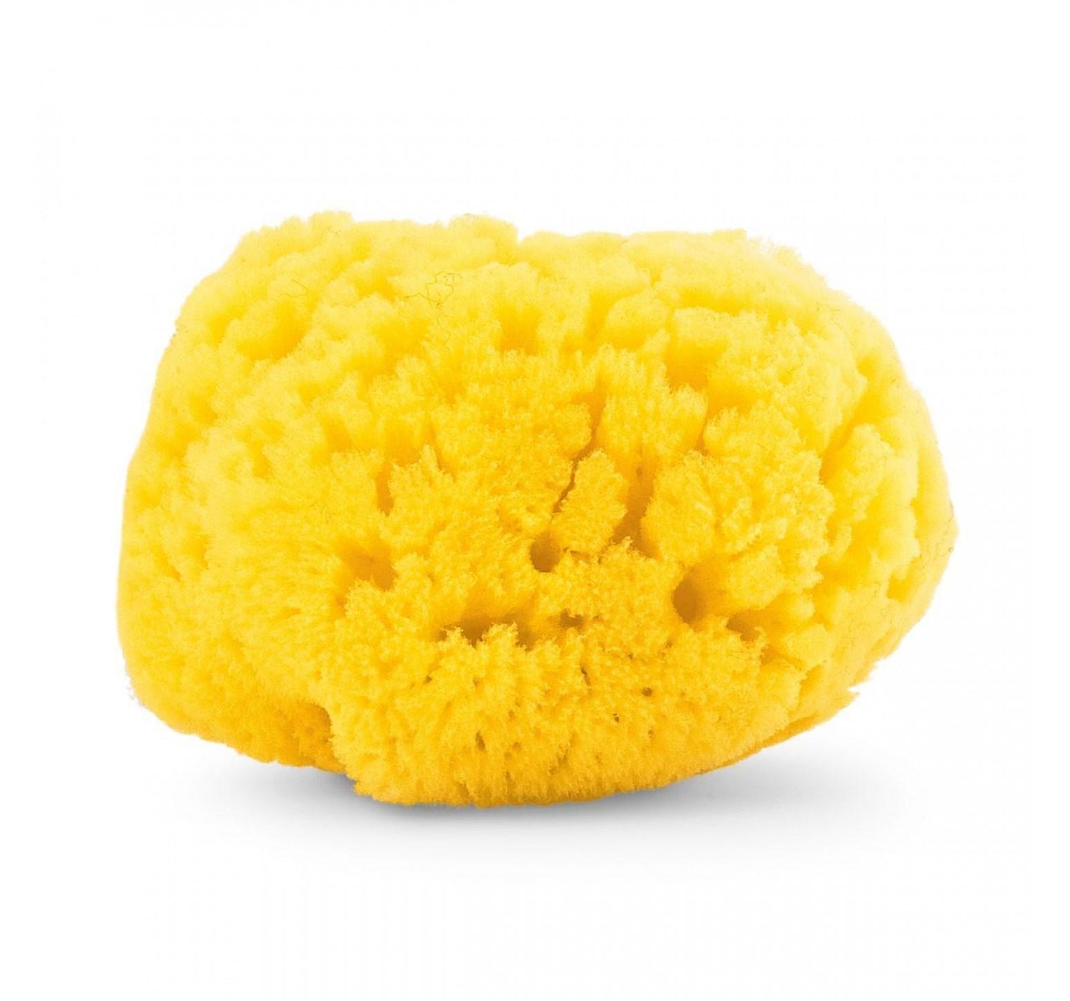 Chicco Esponja marina natural extra absorbente